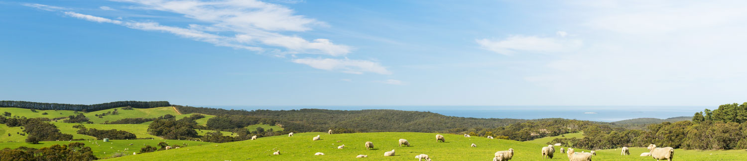 Mineral Requirements for Ruminants | Nutrimin